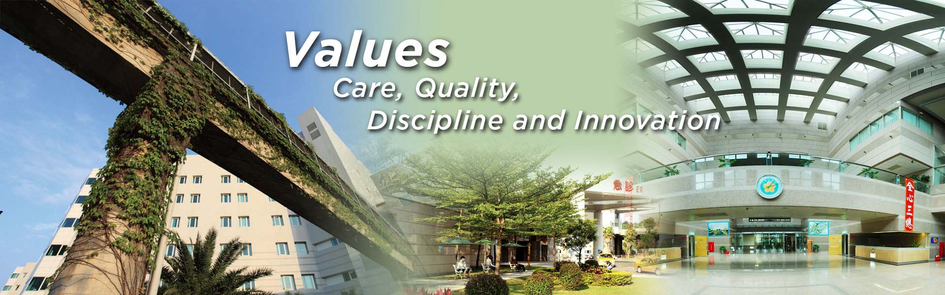 Values_Care_Quality_Discipline_and_Innovation